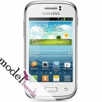 Samsung Galaxy Young S6310 (4)